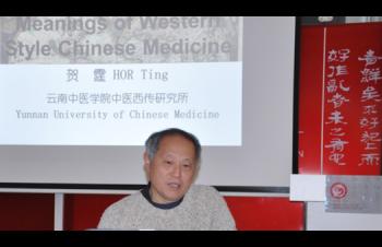 Westliche Chinesische Medizin